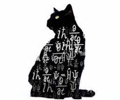 Schrodinger's Cat Graphic